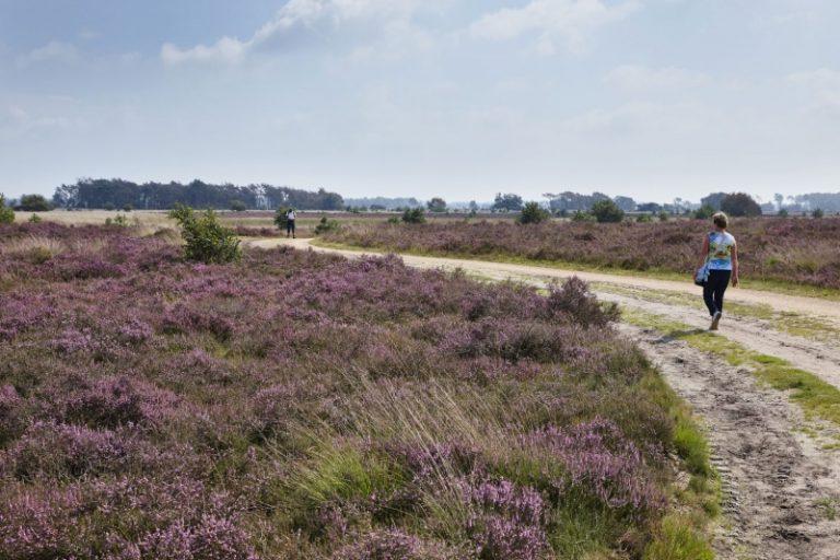Wandelroutes Noord Brabant Toeractief