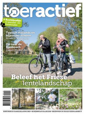 Toeractiedf 2 2019 cover