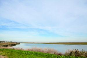 Wandelroute Almere