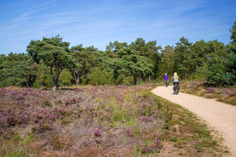 Limburgse Maasroute: fietsen langs tien kunstwerken