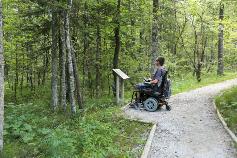 Vijf rolstoelvriendelijke wandelroutes