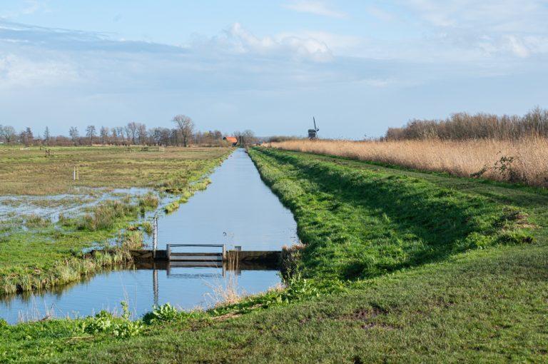 Natuurgebied Zouweboezem bij Sluis