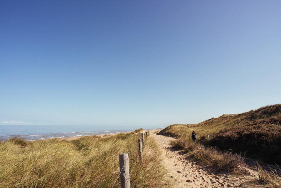 Duinen op wandelroute door natuurgebied Meijendel