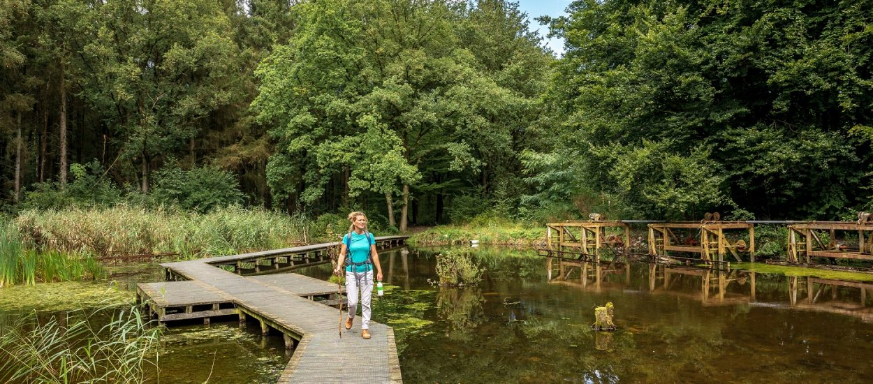 Wandelroute Marknesse