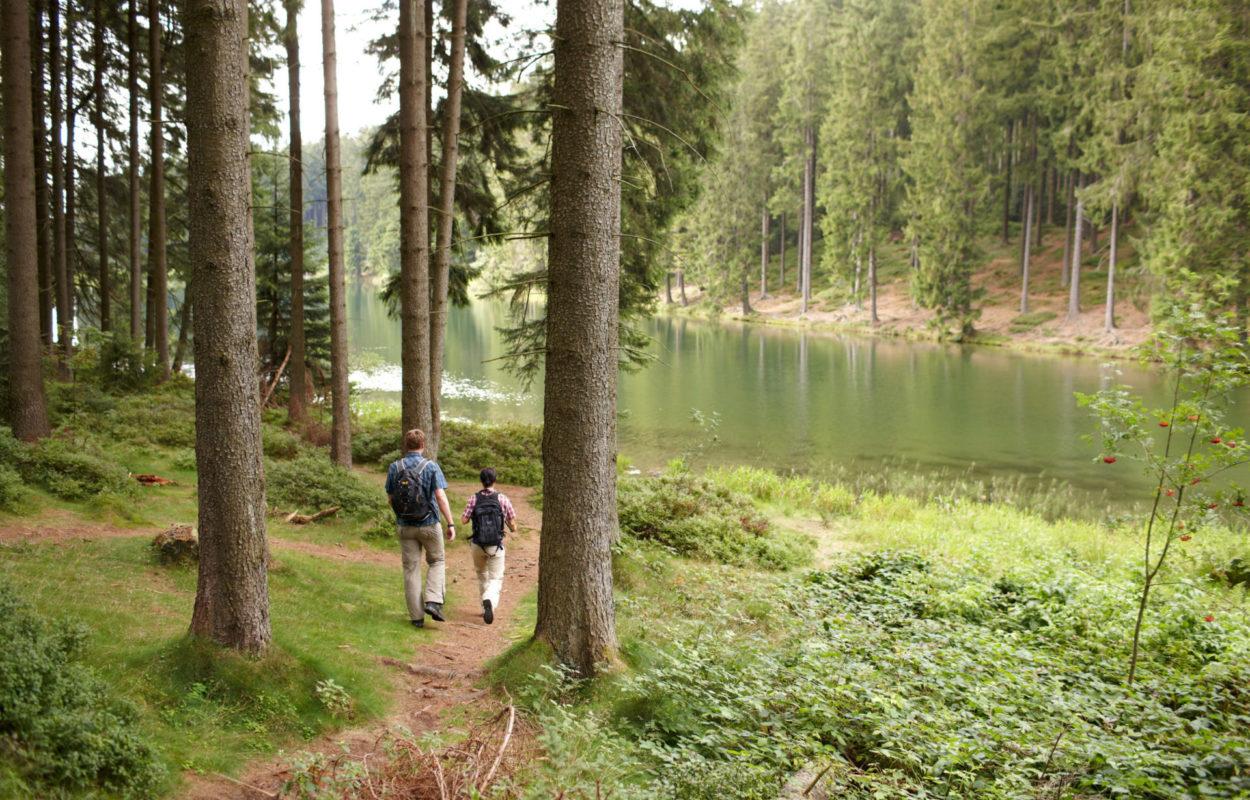 Vijvers in de Oberharz_Harzer Tourismusverband, M. Gloger