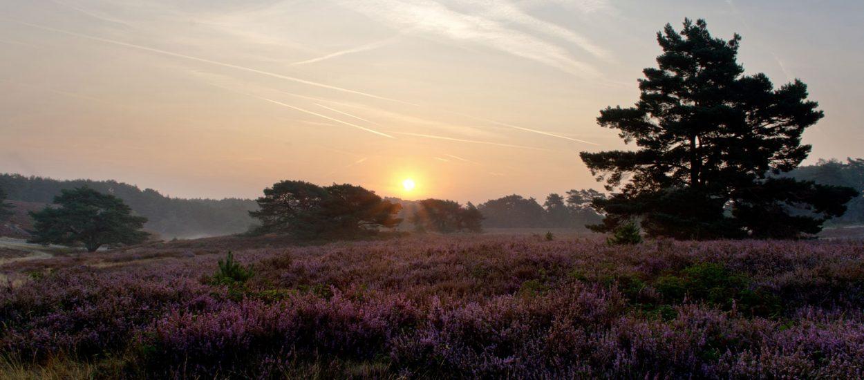 Fietsroutes Zuid-Limburg
